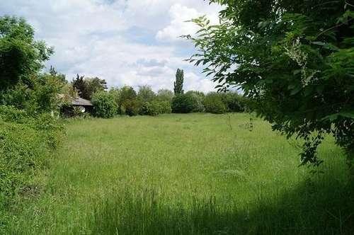 Grundstück in der Feriensiedlung