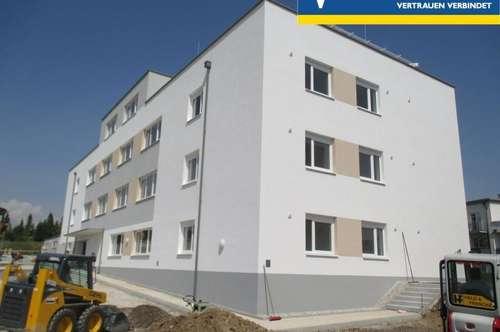 Achtung Provisinsfrei! Frei finanzierte Wohnhausanlage mit 13 Wohnungen