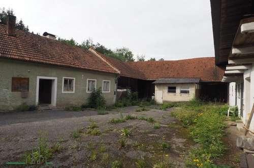 Sanierungsbedürftiges Bauernhaus im südlichen Waldviertel