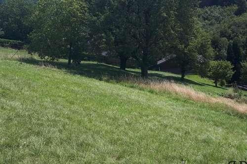 Baugrundstück mit unverbaubaren Ausblick in die Landschaft - insgesamt ca. 2000 m²