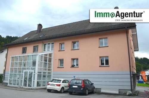 Schöne 1-Zimmerwohnung in Schwarzach