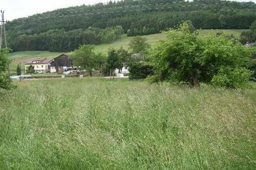 Ruhiges, idyllisches Grundstück - großzügig bebaubar