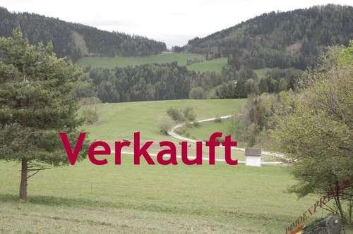Einzigartige Baugrundstücke für Naturliebhaber im Grünland v.Reinsberg