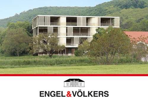 Fernblick - Noblesse –Residenz Kloster am Spitz