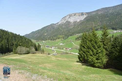 6,6 ha großes Grundstück bestehend aus Bauland, Wiese und Wald in Zell bei der Pfarre-Sele