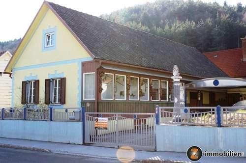 Kleines Landhaus mit Garten in Ortslage!