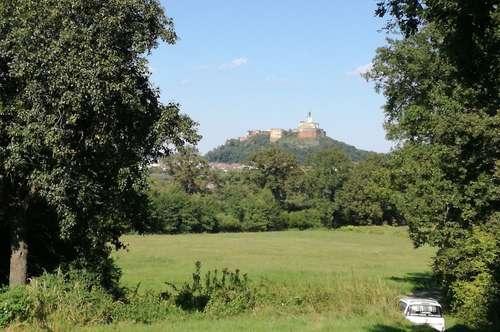 Grünland mit Blick auf Burg Güssing in herrlicher Ruhelage (ca. 4939 m²)