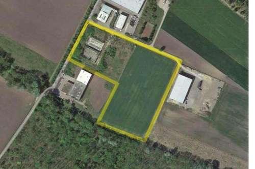 Kauf oder Miete, Betriebsbaugrundstück - 2433 Margareten am Moos