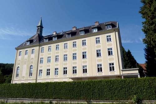 Exquisite Altbauwohnung mit Terrasse im Wienerwald (privat)