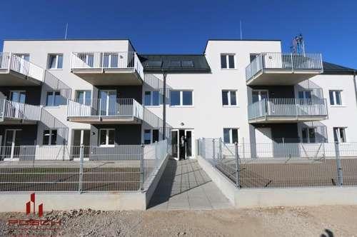 DG- NEUBAUERSTBEZUG, SOFORT beziehbar, 3 Zimmer, West-Balkon, Ziegel-massiv, PROVISIONSFREI ! ,Ruhelage, Top Infrastruktur !!