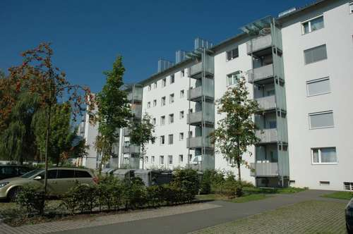 Provisionsfrei: Schöne & günstige Zweizimmerwohnung mit Küche & neuwertigem Bad - in einer sonnigen Siedlung