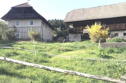 Klagenfurt Nord alter Bauernhof mit 2.750 m² Grund