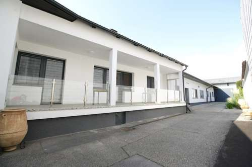 Vollständig renovierter Streckhof in Gols - Erstbezug