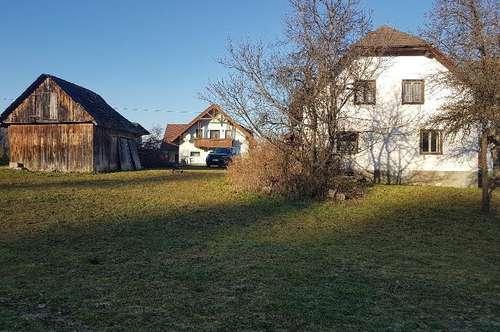 Einfamilienhaus großes Grundstück