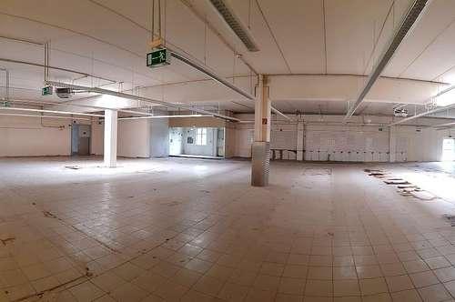 KAUF - Betriebsliegenschaft mit ca. 15.000 m² Grundfläche - nähe Autobahnanschluß A2 Wöllersdorf