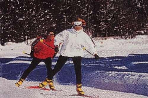 Flattnitz-Ski u.Wandergebiet: Sanierte 50 m² EGT-Wohnung