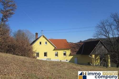 Großer Vierkanthof mit tollem Innenhof im Bezirk Jennersdorf