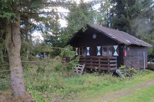 Grundstück mit alter Holzhütte (Abrißobjekt) in der Steiermark