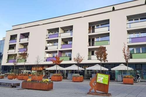 Große 2-Zimmer-Wohnung am Inn ( VM800759 )