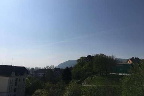 Dachterrasse mit Blick auf den Leopoldsberg! PROVISIONSFREI! SÜDSEITIG und HELL