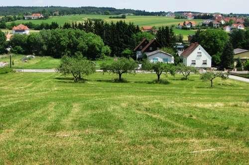 Bad Tatzmannsdorf: Baugrundstück mit schöner Aussicht