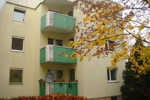 sonnige, geräumige 3-Zimmer-Wohnung im Erdgeschoß mit Balkon