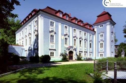 *** NEUER PREIS *** Verwirklichen Sie Ihren Wohntraum - individuell einrichtbare, Galeriewohnung im Schloss Lichtenegg - Top W022