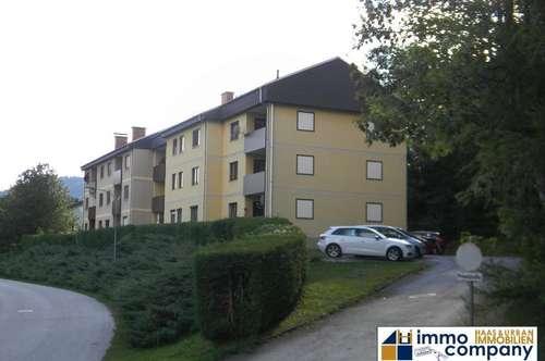 *** Grünbach in der Region Schneebergland *** Renovierte 3 Zimmer Wohnung am Waldrand