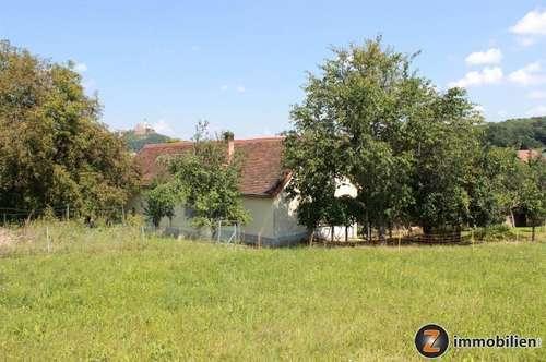 Bauernhof mit Obstgarten und großem Grund