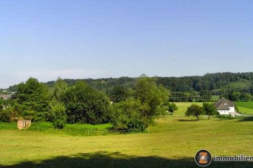Sonnenlage Nähe Jennersdorf: 6800m² Baugrund mit 7000m² Wald