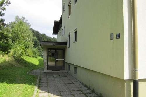 Wohnung in Rosenbach Gemeinde St. Jakob!