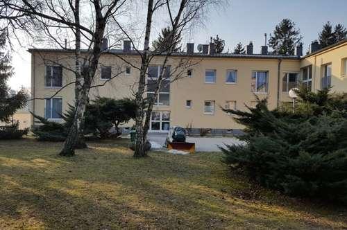2 Zimmer Wohnung mit Balkon in Maria Enzersdorf zu vermieten