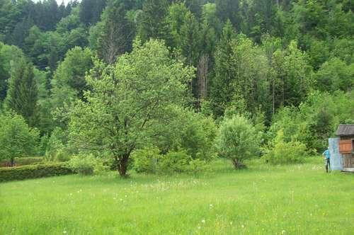 Grundstück in St.Jakob i. R. zu verkaufen ohne Bauverpflichtung