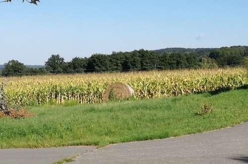 Neuer Preis!! - Landwirtschaftlicher Grund - ca. 6.599m²