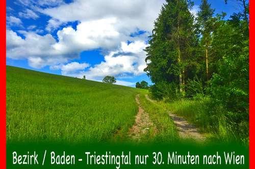 Baden - Triestingtal - NEUHAUS - Sehr gemütliches Landhaus ca.155qm Wnfl., & 1043qm Grundfläche, hier lässt sich,s gut leben!
