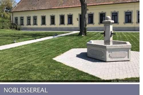 Hereinspaziert! Einmaliges Ambiente beim Schloss Bockfließ!