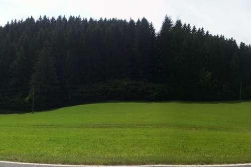 9542 Afritz/See Privat! Schönes Baugrundstück am Fuße des Mirnocks