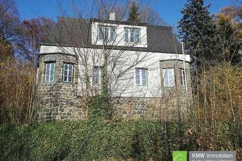 Stilvolle Villa mit unverbaubarem Donaublick neben dem Schloss Persenbeug