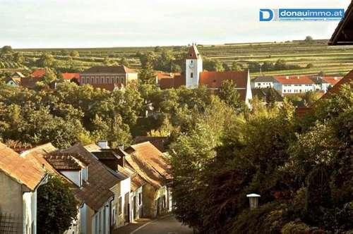 Lengenfeld: Weinkeller zu mieten - Presshaus und Kellerröhre, Nächtigungsmöglichkeit - ideal für Golfer