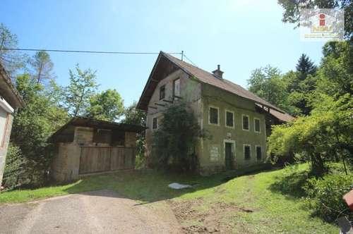 Älteres 200m² Wohnhaus mit altem Baurnhaus und Nebengebäude mit 2,88 Ha Grundstück in Velden
