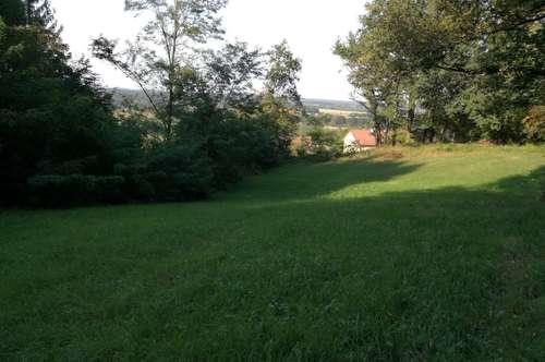 Neuer Preis!!! -Grünfläche mit kleinem Waldanteil - ca. 3061 m²