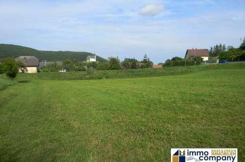 *** Höflein an der Hohen Wand *** Großes Grundstück in der Region Schneeberg - Hohe Wand