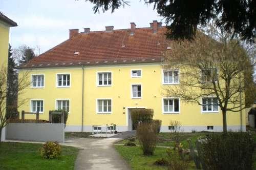 Wohlfühl-Wohnen auf erstklassigem Niveau im wunderschönen friedlichen Grieskirchen! Ihr neues Zuhause umgeben von Grünflächen! prov.frei.