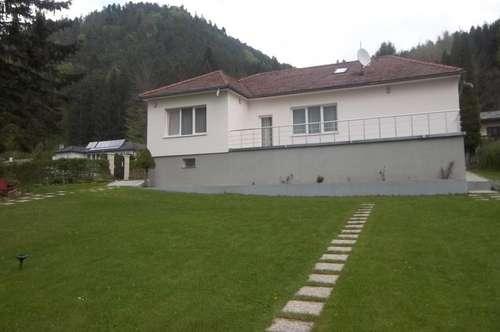 MANNLICHER I Einfamilienhaus im Grünen mit großem Garten und Swimingpool
