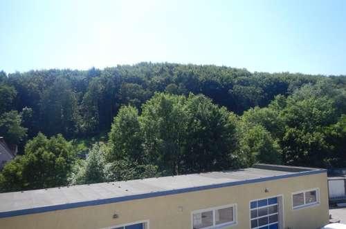 Sonnige 2 Zimmer Wohnung mit Balkon