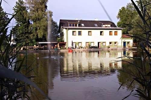 Wohnung zu vermieten: St Veit an der Glan