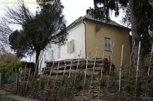 Unvergleichliches Herrenhaus, ca. 300 m² , großer Garten, vielseitig nutzbar!!