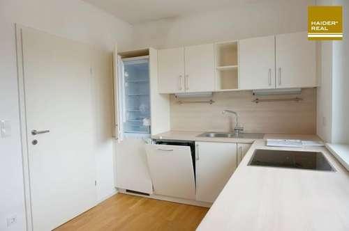 Barrierefreie 3 Zi-Dachterrassen-Wohnung im 2. Liftstock