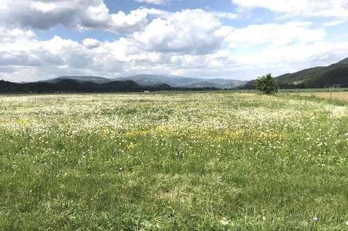 68.000 m² Wiesen., u. Ackerfläche + Baugrund mit Panoramablick