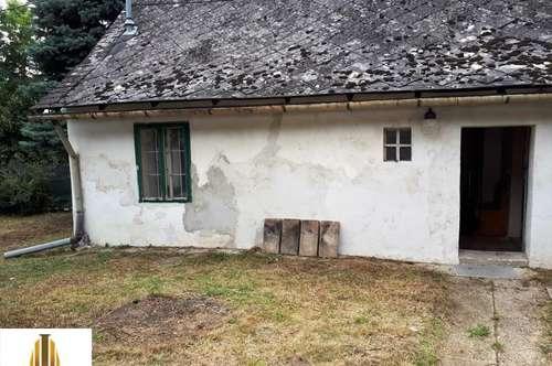 Ich kleines Bauernhaus suche dringen Lebensrettung!!!